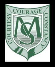 ms logo 2