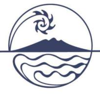 parnel ds logo